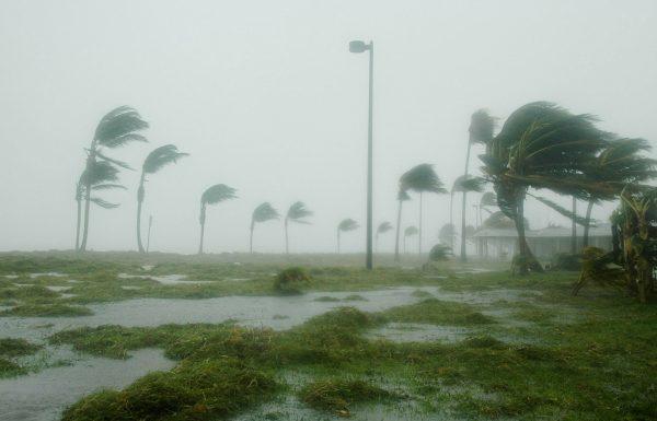שוב נבואות השקר של ברלנד אינן מתקיימות והפעם על השיטפון במיאמי