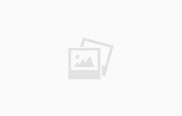תיעוד: חבר האלימים האומללים משה קנפלר וישעיה שניוק מנסים לחדור לעצרת שהתקיימה באייר בבית שמש המאבטחים מסלקים אותם בבושת פנים. צפו